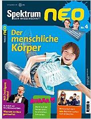 Spektrum neo: Nr. 4 PDF