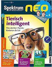 Spektrum neo: Nr. 6 PDF