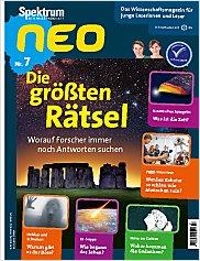 Spektrum neo: Nr. 7 PDF