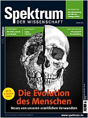Spektrum der Wissenschaft: Januar 2015 PDF