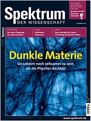 Spektrum der Wissenschaft: November 2015 PDF