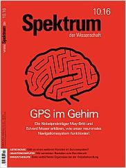 Spektrum der Wissenschaft: Oktober 2016 PDF