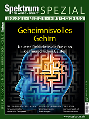 Spektrum der Wissenschaft: Spezial Biologie - Medizin - Hirnforschung 1/2013