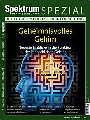 Spektrum der Wissenschaft: Spezial Biologie - Medizin - Hirnforschung 1/2013 EPUB