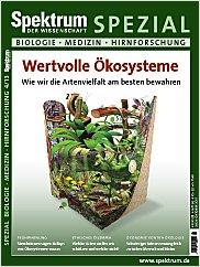 Spektrum der Wissenschaft: Spezial Biologie - Medizin - Hirnforschung 4/2013 PDF
