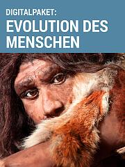 Digitalpaket: Evolution des Menschen